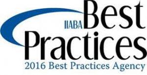 iiaba-best-practices